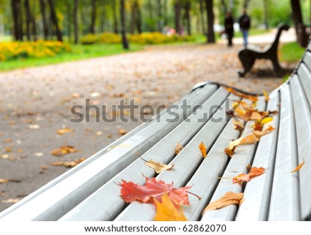 Fallen leaves on the park bench - stock photo
