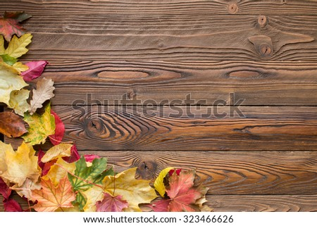 fallen leaves on wooden background, top view, copy space - stock photo