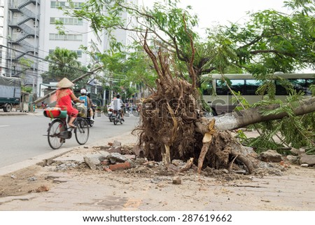 Fallen tree damaged on street by natural heavy wind storm - stock photo