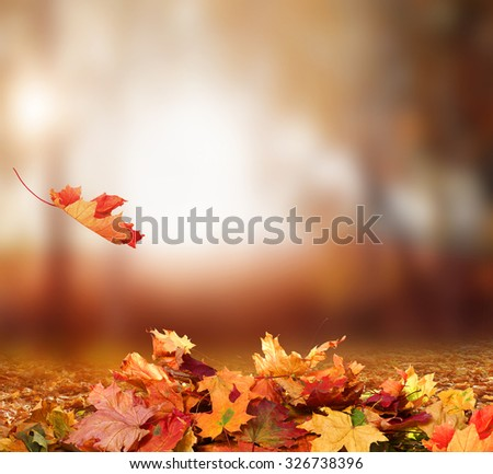 Falling Autumn Leaves background - stock photo