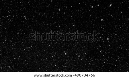 Falling down in slow motion real snowflakes from top to bottom calm snow, shot on black background, matte, wide angle, ed animation, isolated, perfect for digital composition