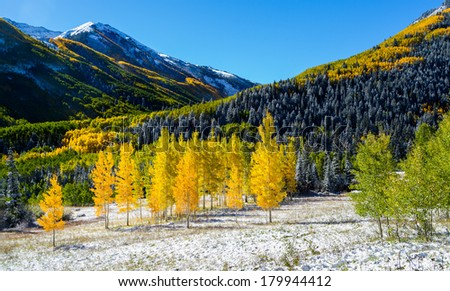 Falls color in Colorado mountain, Aspen, CO - stock photo