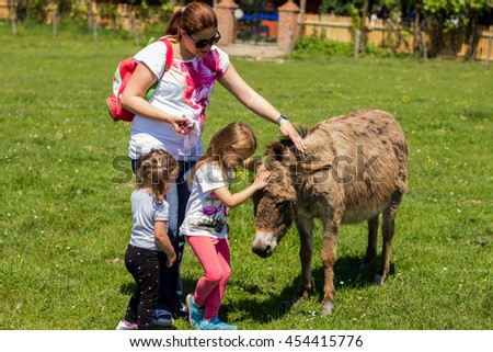 Family at farm, feeding donkey in the green field.