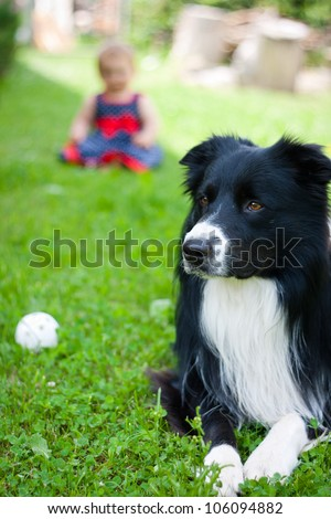Family dog outdoors in the garden playing with the baby child - stock photo