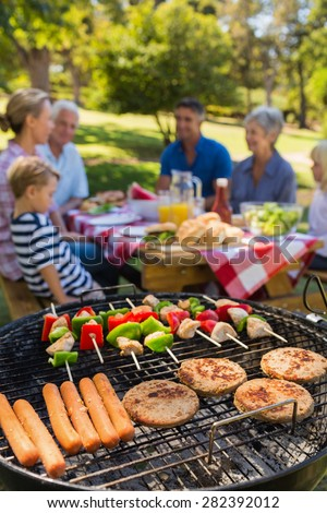 Family doing barbecue in the park on a sunny day - stock photo