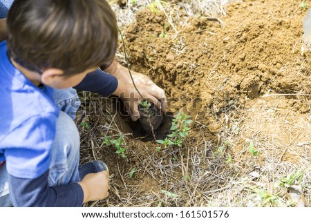 Family Enjoying Outdoors, Father and Son Planting - stock photo