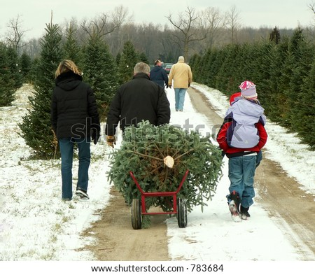 Family hauling their freshly cut Christmas tree - stock photo
