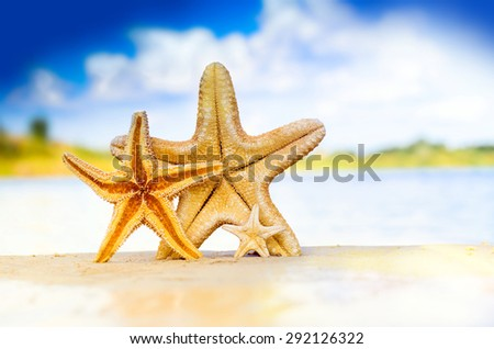 Family holiday concept - starfish walking on summer beach against sea and sky background - stock photo