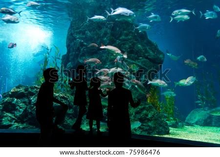 Family in oceanarium - stock photo