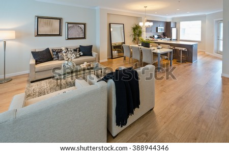 Family, living room with the coffee table, sofa, couch and chairs and the dining table and the luxury modern kitchen at the back. Interior design.