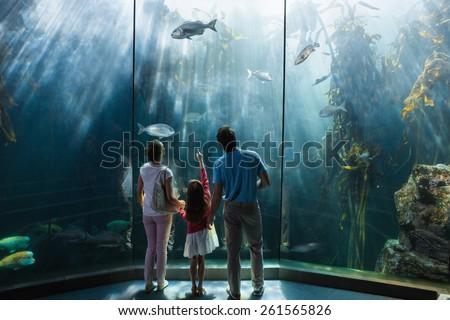 Family looking at fish tank at the aquarium - stock photo