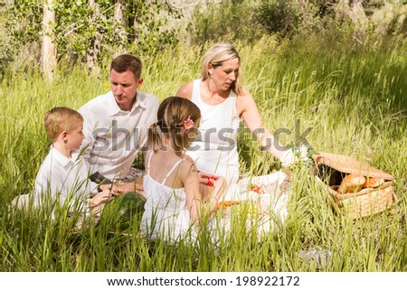 Family on summer picninc in the countryside.