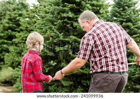 Family selecting a tree for Christmas at the Christmas tree farm. - stock photo