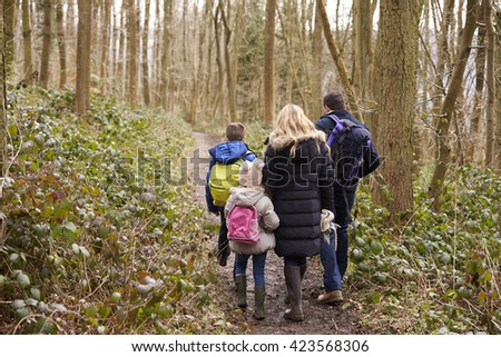 Family walking together through a wood, back view - stock photo