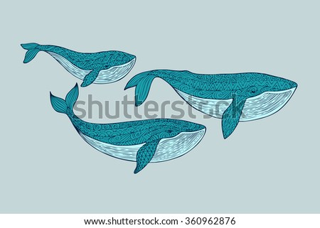 Family whales. Mom, dad and baby whales swimming in the pack. Patterned blue whale silhouette on a blue background. Zentangle stylized set sea animals. Hand Drawn aquatic doodle illustration. - stock photo