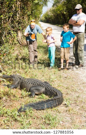 Family with two children, tourists photographing a large alligator on the phone - stock photo