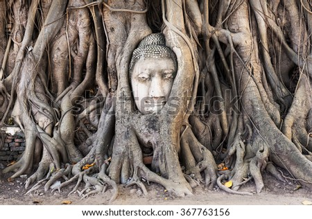Famous Head of Buddha statue in the tree roots at Wat Mahathat temple, Ayutthaya, Thailand. - stock photo