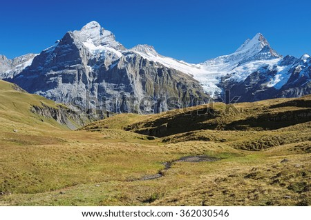 Famous hiking trail from First to Grindelwald (Bernese Alps, Switzerland). Great views are enjoyed towards mountains like the Eiger, Monch and Jungfrau. You will also encounter the Bachalpsee en route