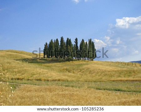 Famous scene of the Orcia Valley, Tuscany, Italy - stock photo