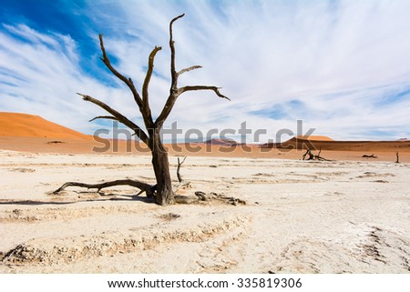 Famous Sossusvlei or better Deadvlei scenery in Namibia. The clouds make this image more dramatic.