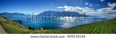 Famouse vineyards in Montreux against Geneva lake.  - stock photo