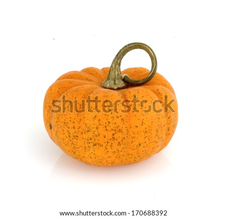 Fancy pumpkin isolated on white background - stock photo