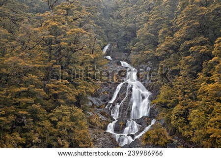 Fantail Falls, near Haast, South Island, New Zealand - stock photo