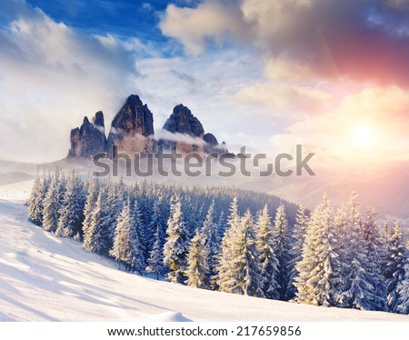 Fantastic evening winter landscape. Dramatic wintry scenery. Creative collage. National Park, Swiss, Europe. Beauty world. Instagram toning effect. Happy New Year! - stock photo