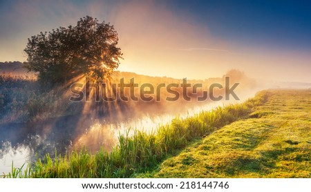 Fantastic foggy river with fresh green grass in the sunlight. Sun beams through tree. Dramatic colorful scenery. Seret river, Ternopil. Ukraine, Europe. Beauty world. - stock photo