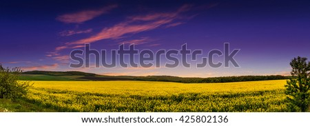 fantastic landscape, majestic sunset in the yellow fields rapeseed. for background. series creative images. color in nature.