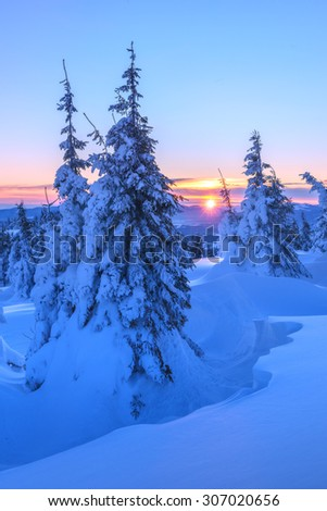 Fantastic orange evening landscape glowing by sunlight. Dramatic wintry scene with snowy trees. Gorgany ridge, Carpathians, Ukraine, Europe. Merry Christmas! - stock photo