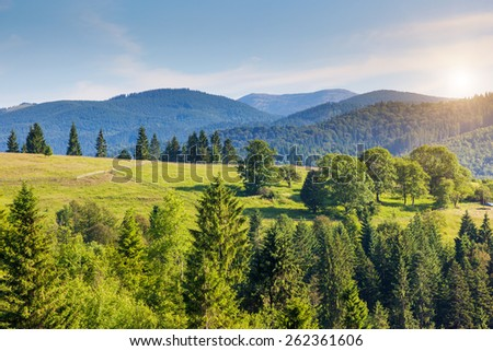 Fantastic sunny day in mountain landscape. Dramatic morning scenery. Carpathian, Ukraine, Europe. Beauty world.