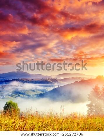 Fantastic sunny hills under morning cloudy sky. Dramatic overcast sky. Carpathian, Ukraine, Europe. Beauty world. - stock photo
