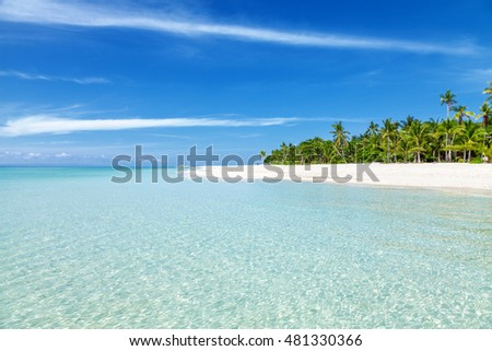 Fantastic turquoise beach with palm trees and white sand in the Philippines