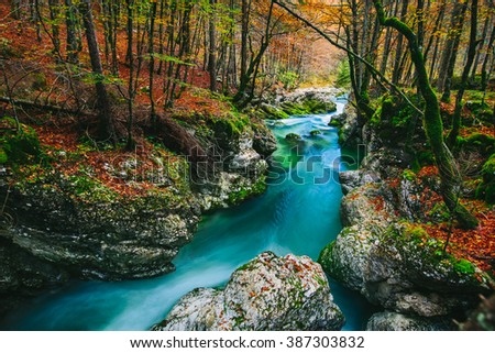 Fantastic view of the canyon Mostnica (Mostnice Korita) with crystal clear blue water, colorful forest and white rocks - Triglav national park, near Bled, Slovenia, Europe - stock photo