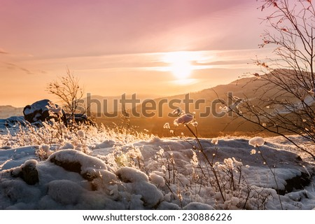Fantastic winter landscape at sunset. Snow-covered plants on the mountain. Creative toning effect - stock photo