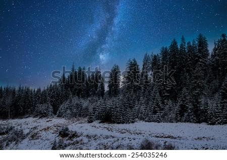 Fantastic winter landscape. Carpathian, Ukraine - stock photo