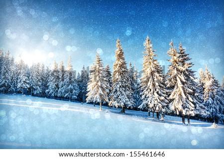 Fantastic winter landscape. Christmas abstract bokeh. Carpathian, Ukraine, Europe. Beauty world.  - stock photo