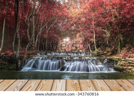 fantasy autumn beautiful water fall and wood  - stock photo