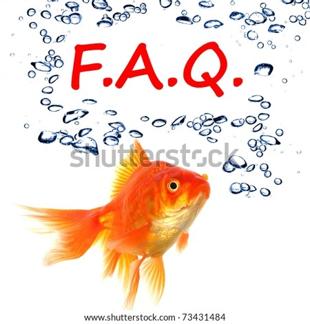 faq or frequently asked questions concept with goldfish - stock photo