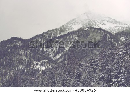 Far away mountain peak covered by clouds and snow under overcast sky with conifer trees in the foreground - stock photo