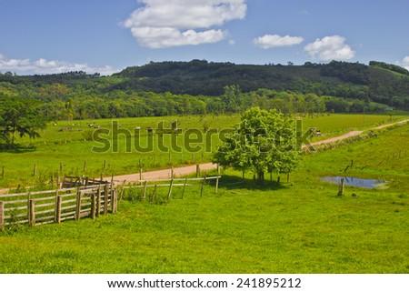 Farm at Torres - Rio Grande do Sul - Brazil - stock photo