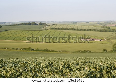Farm buildings and crop filled green fields.