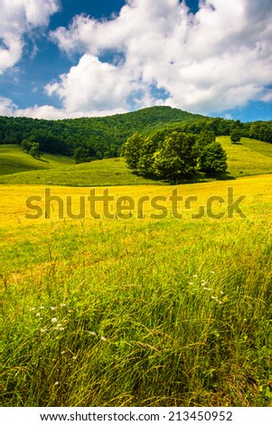 Farm field and mountain in the rural Potomac Highlands of West Virginia. - stock photo