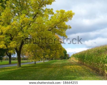 Farm field in autumn - stock photo