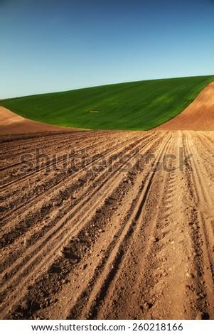 Farm field in spring - stock photo