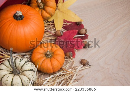 Farm fresh squash, pumpkins and fall leaves with straw and a basket - stock photo