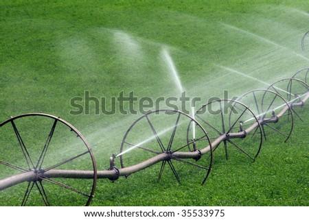 Farm Irrigation. - stock photo