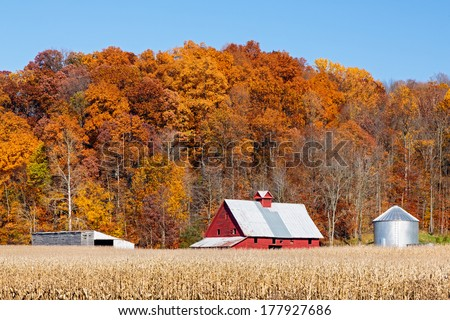 Farm land with a crop of corn and a bright red barn is backed by a hillside full of trees with vibrant and colorful autumn foliage. - stock photo