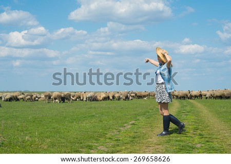Farm life, a young girl and a flock of sheep